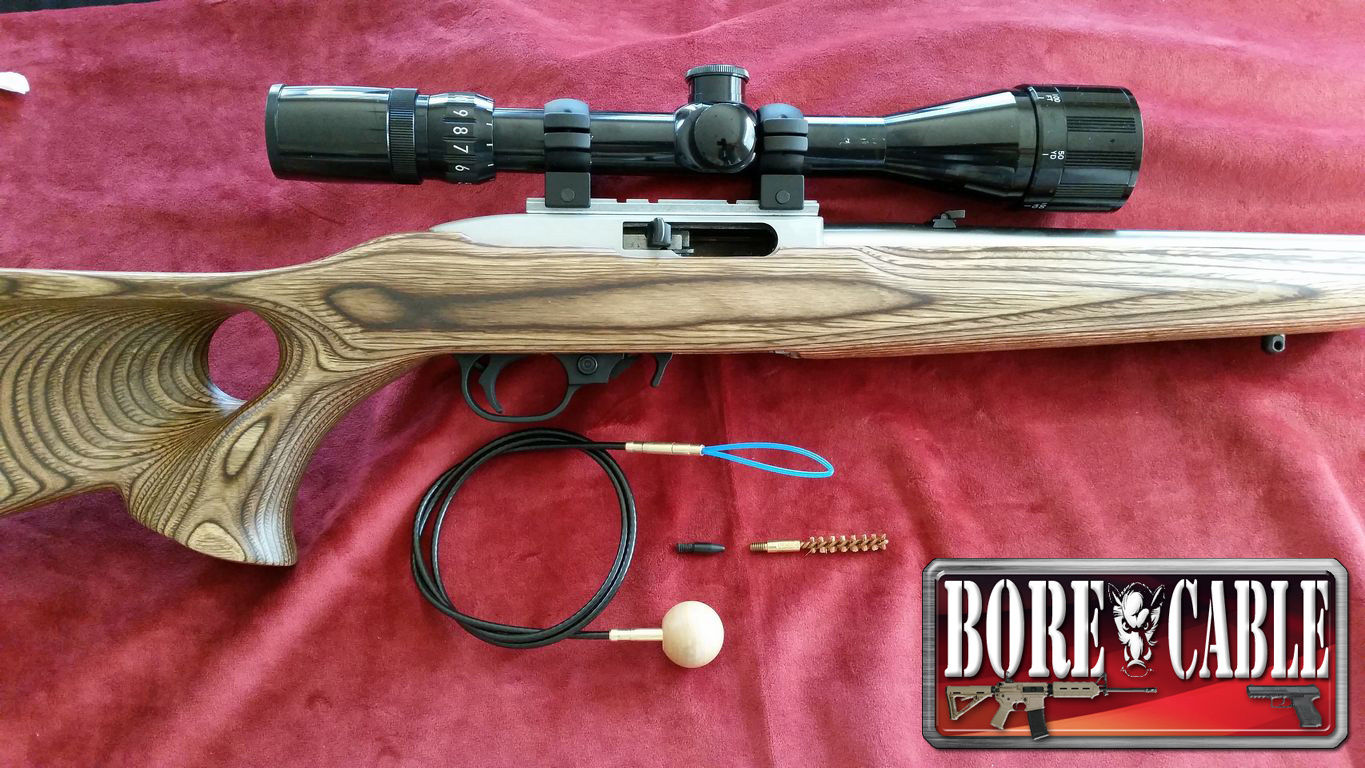 how to clean a ruger 10 22